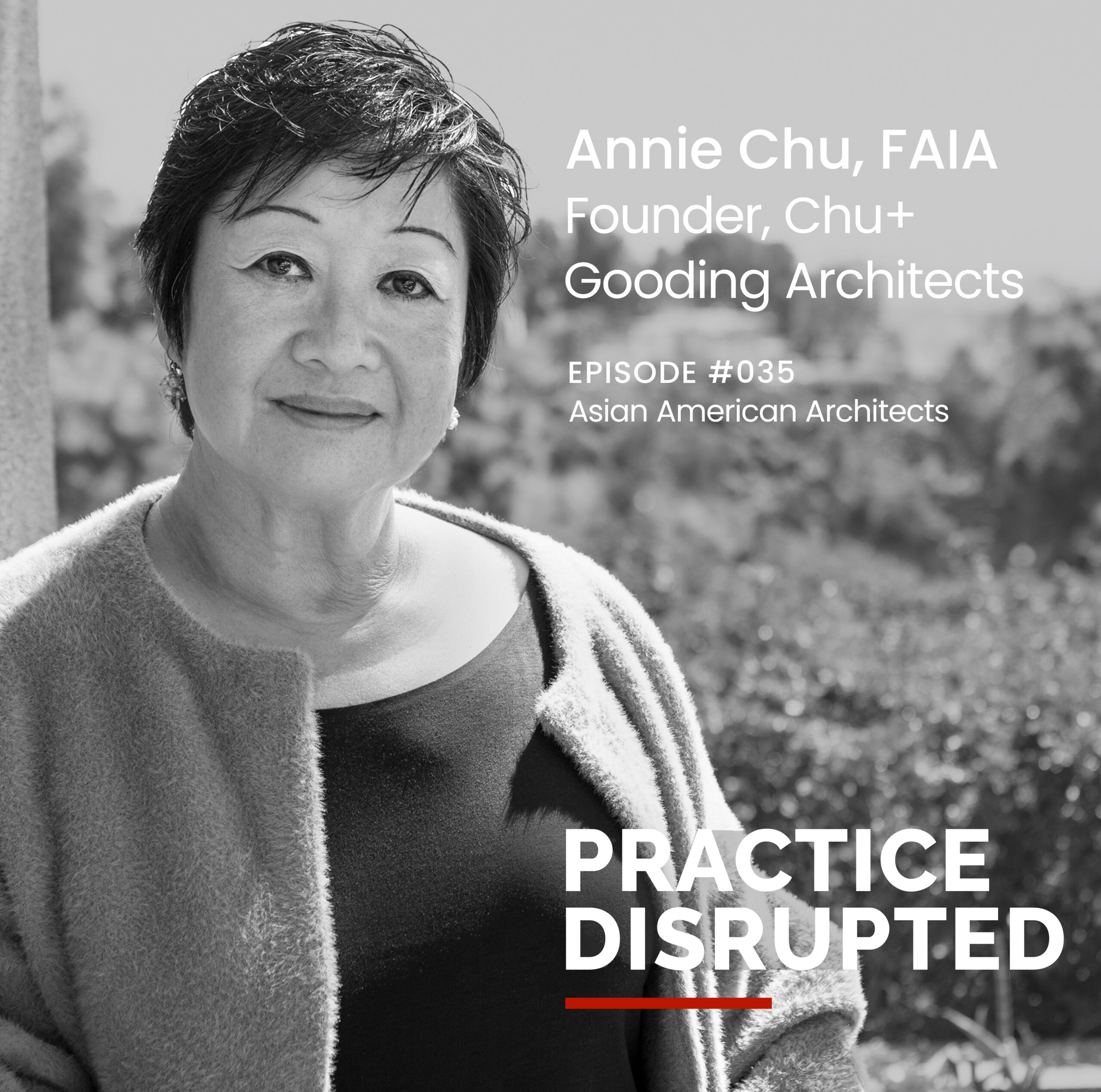 Annie speaks volumes on Practice Disrupted podcast